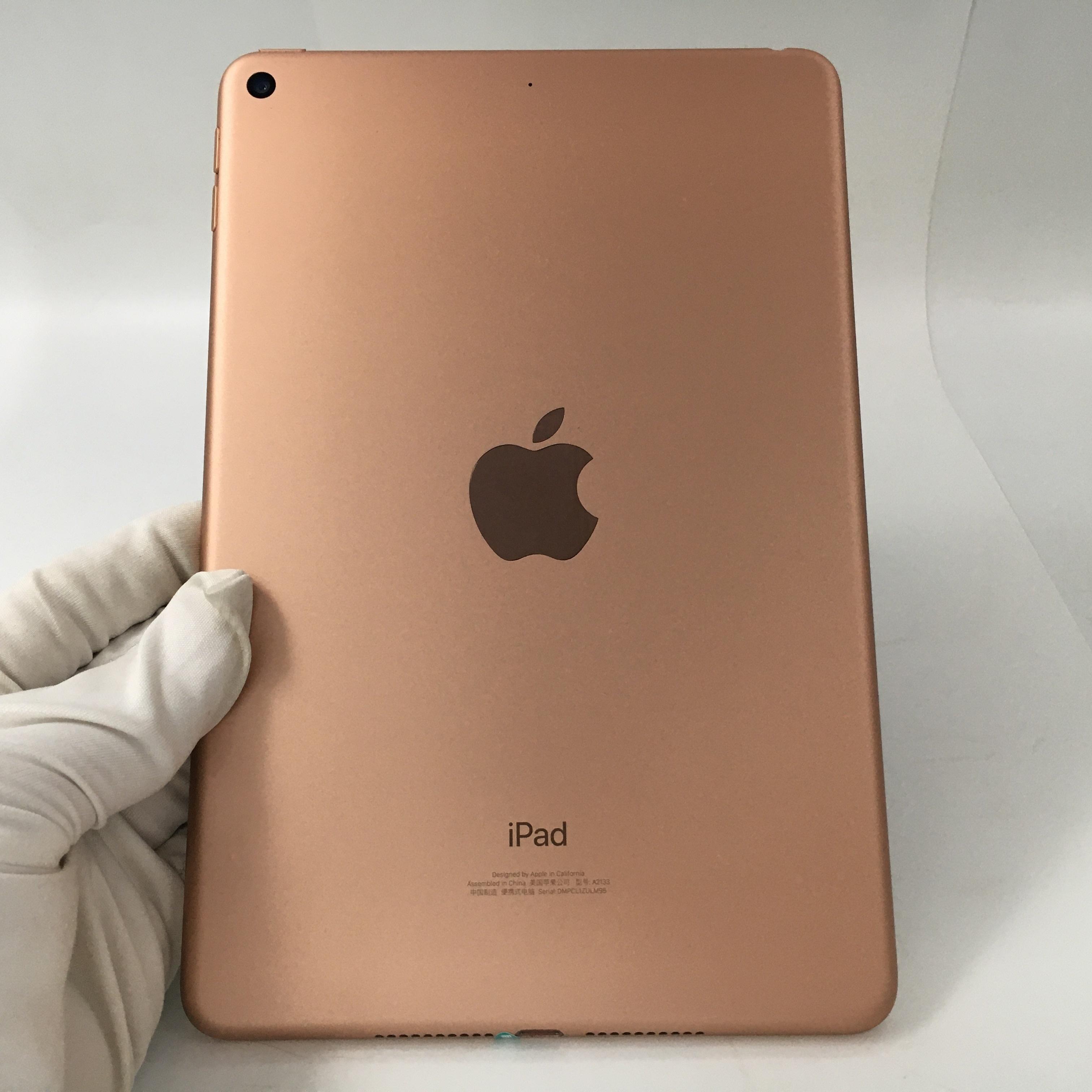 苹果【iPad mini5 7.9英寸 19款】WIFI版 金色 64G 国行 95新